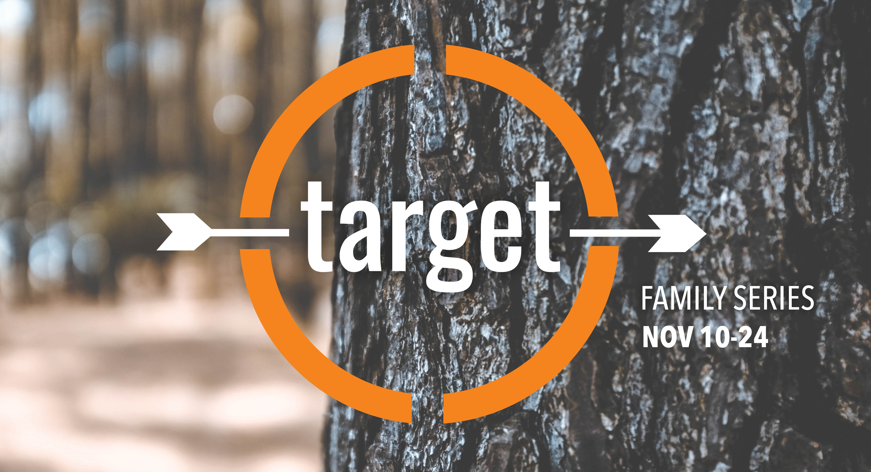 Target - series graphic