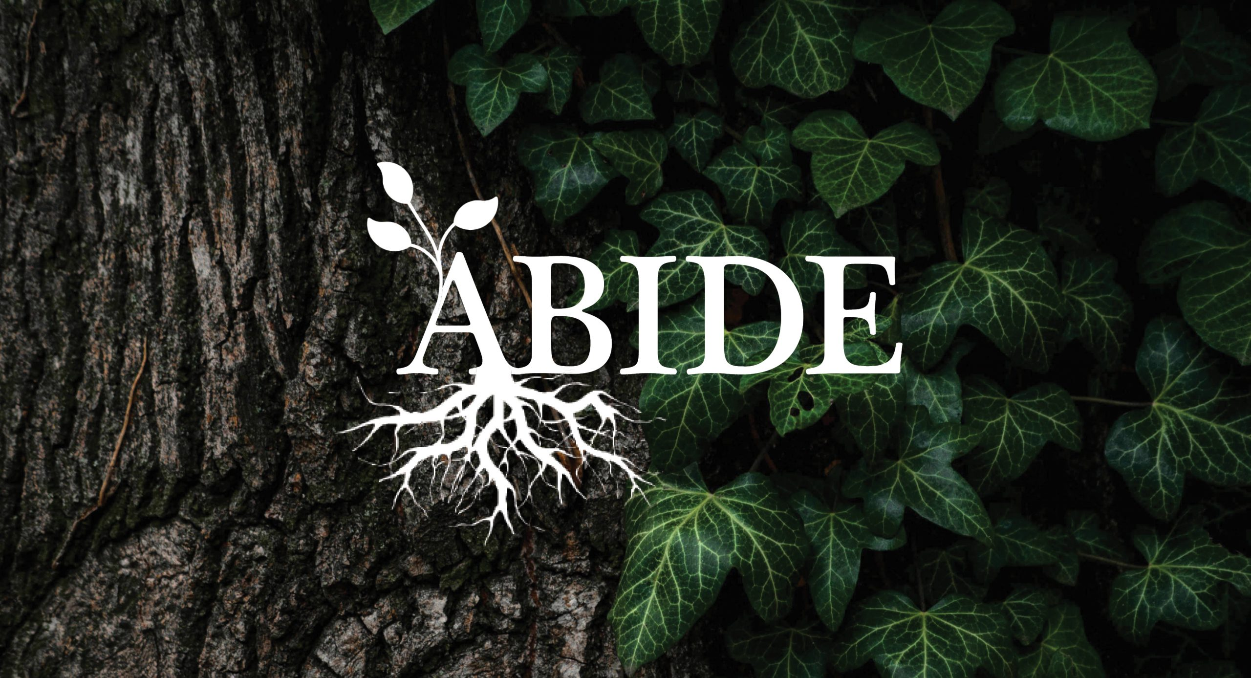 Abide - series graphic